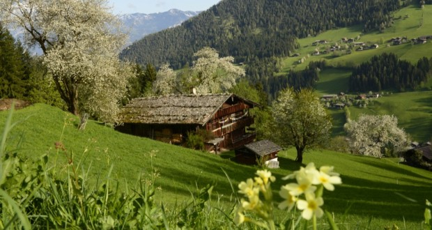 Alpbachtal– Tirol's enchanted valley